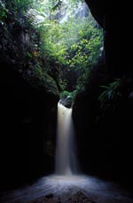 A waterfall in the Wollemi rainforest gorge