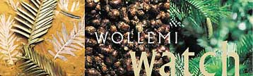 Wollemi Watch